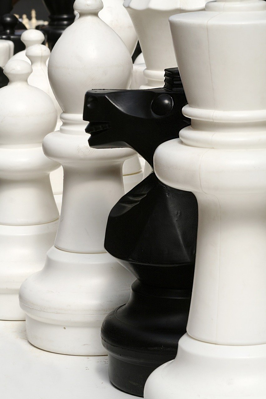chess, pieces, game-775297.jpg