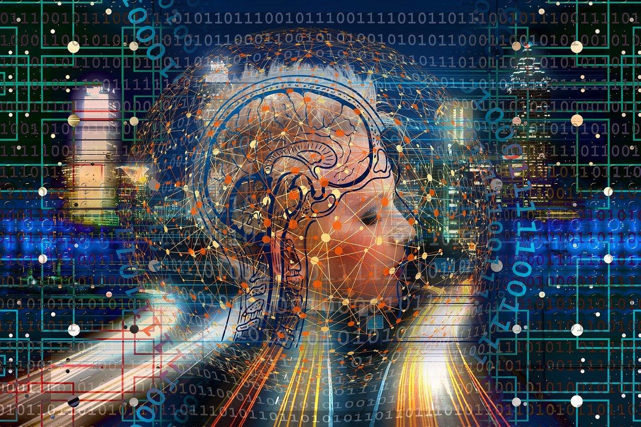transformation, web, brain-4990460.jpg
